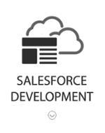 Salesforce Services